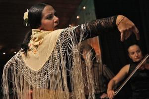 flamenco-594272_1280